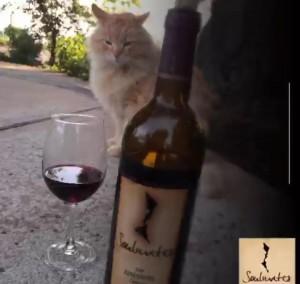 Chunk from Watts Winery